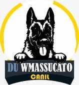 CANIL DU WMASSUCATO
